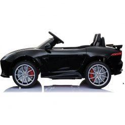 jaguar crni